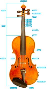 Detaillierte Grafiken