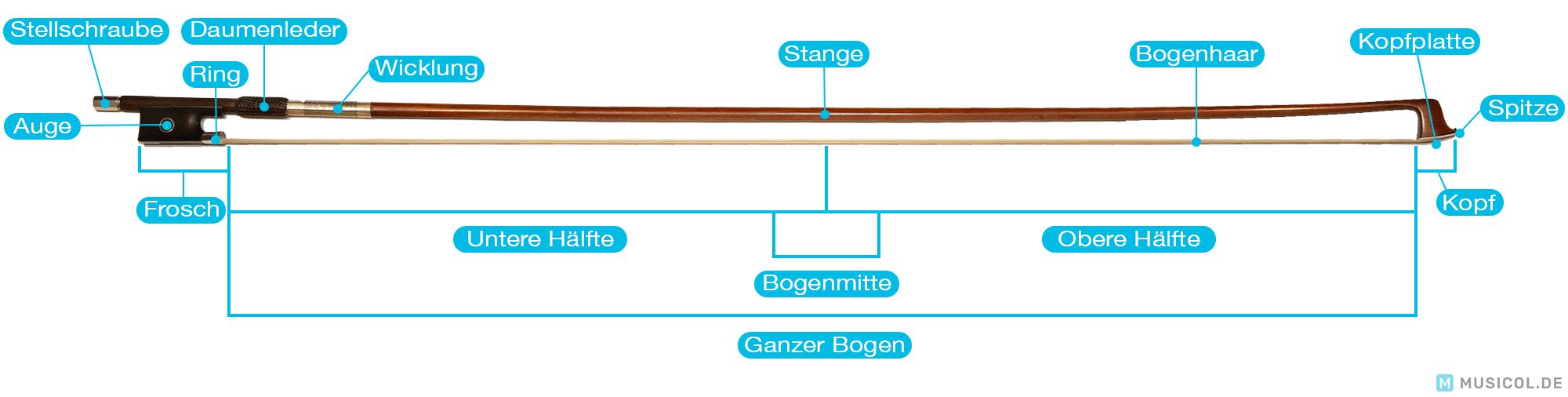 Geige lernen: Den Aufbau des Bogens kennenlernen
